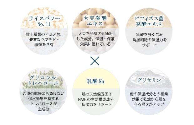 3つの発酵エキス+3つの美容成分