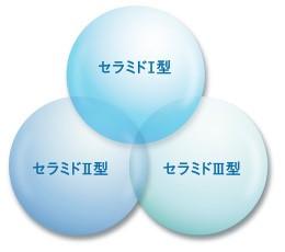 3種類のセラミド